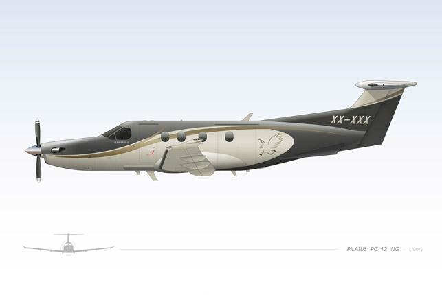P3-10-Pilatus-PC12_Paint-scheme